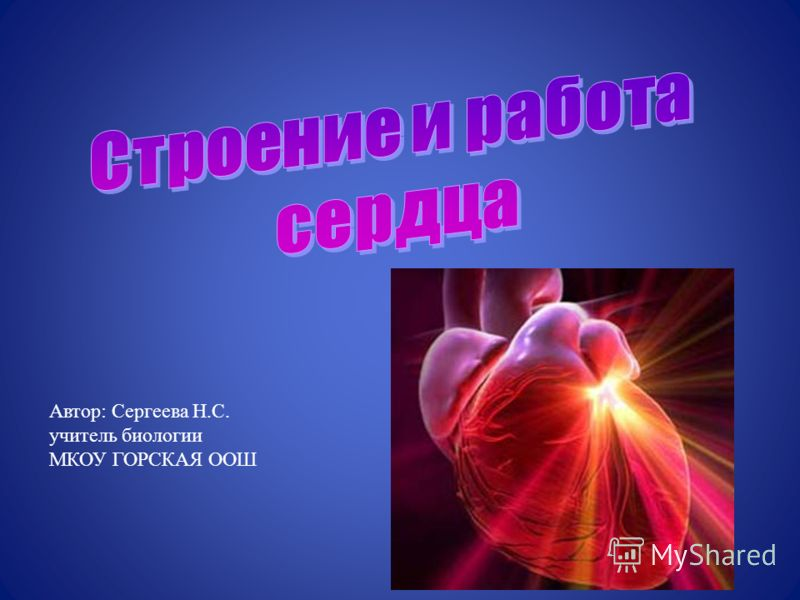 Автор: Сергеева Н.С. учитель биологии МКОУ ГОРСКАЯ ООШ