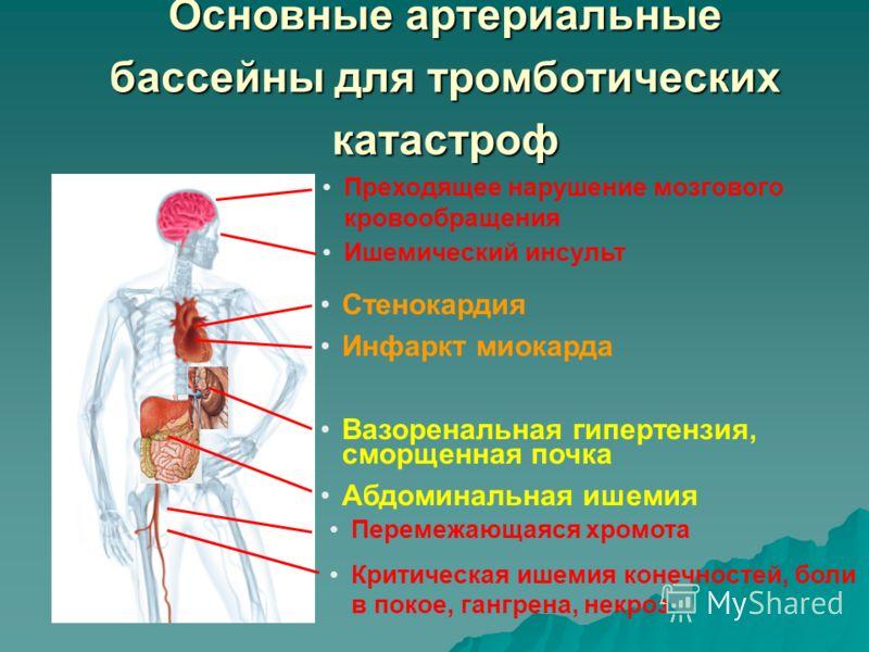 Основные артериальные бассейны для тромботических катастроф Преходящее нарушение мозгового кровообращения Ишемический инсульт Стенокардия Инфаркт миокарда Вазоренальная гипертензия, сморщенная почка Абдоминальная ишемия Перемежающаяся хромота Критиче
