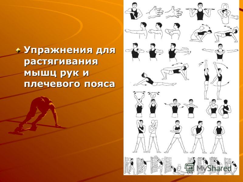Упражнения для растягивания мышц рук и плечевого пояса