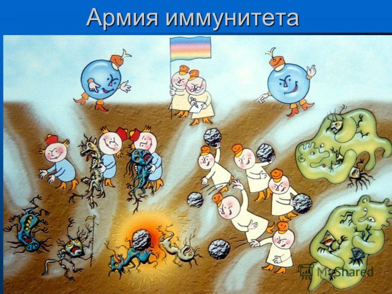 Армия иммунитета