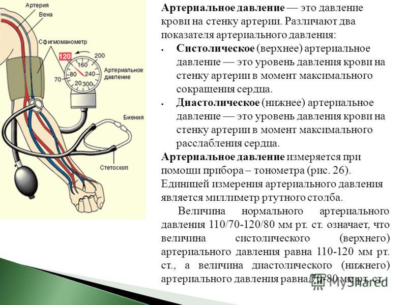 Артериальное давление это давление крови на стенку артерии. Различают два показателя артериального давления: Систолическое (верхнее) артериальное давление это уровень давления крови на стенку артерии в момент максимального сокращения сердца. Диастоли