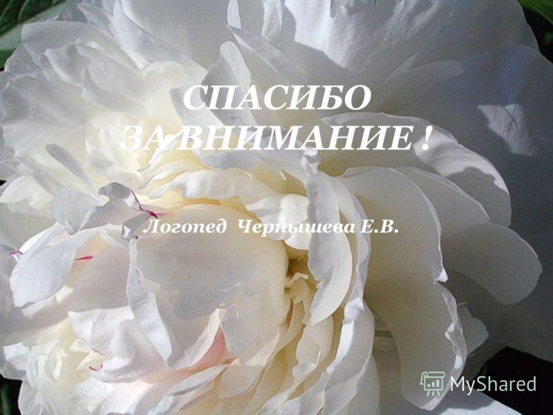 Логопед Чернышева Е.В. СПАСИБО ЗА ВНИМАНИЕ !