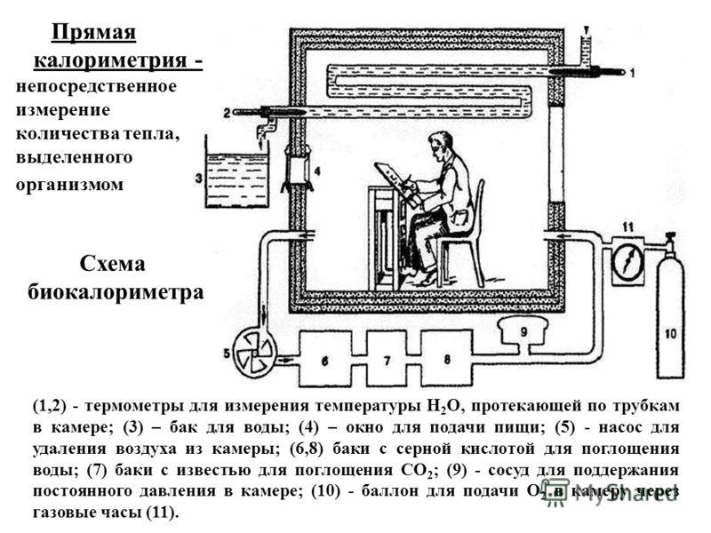(1,2) - термометры для измерения температуры Н 2 О, протекающей по трубкам в камере; (3) – бак для воды; (4) – окно для подачи пищи; (5) - насос для удаления воздуха из камеры; (6,8) баки с серной кислотой для поглощения воды; (7) баки с известью для