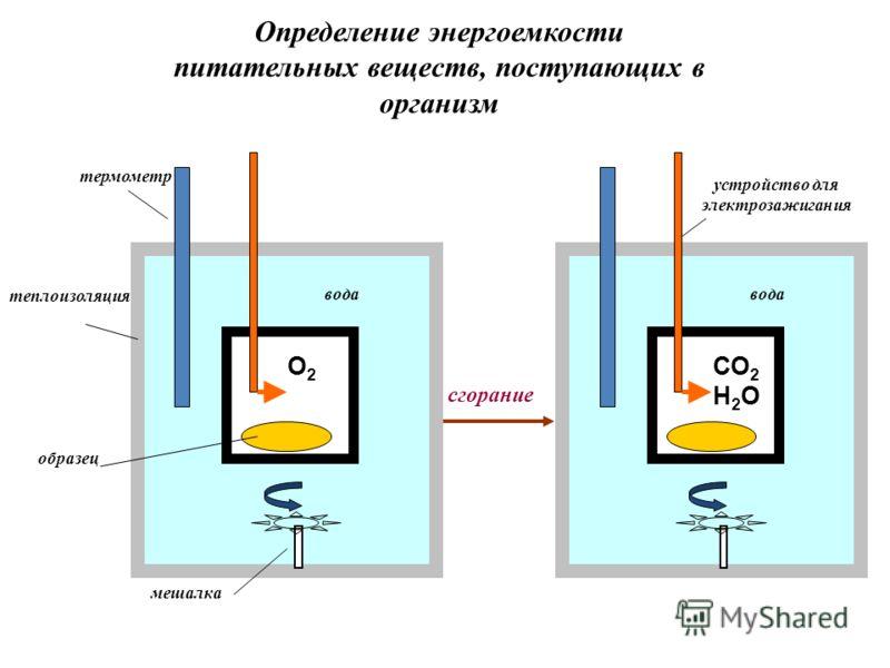 теплоизоляция образец мешалка О2О2 устройство для электрозажигания термометр вода СО 2 вода Н2ОН2О сгорание Определение энергоемкости питательных веществ, поступающих в организм