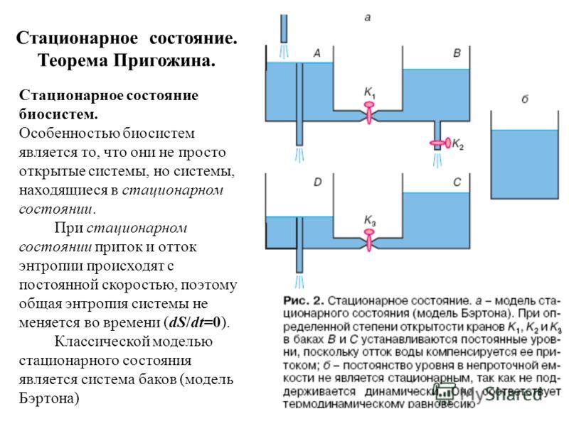 Стационарное состояние. Теорема Пригожина. Стационарное состояние биосистем. Особенностью биосистем является то, что они не просто открытые системы, но системы, находящиеся в стационарном состоянии. При стационарном состоянии приток и отток энтропии