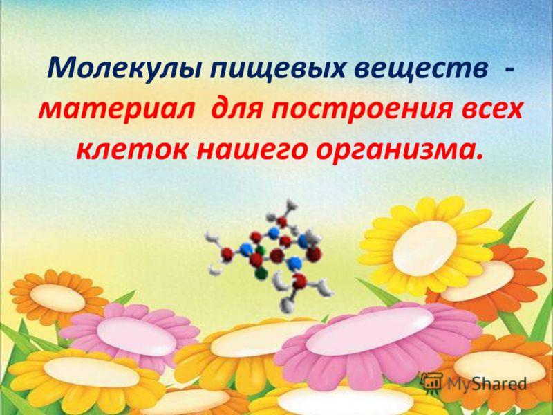 Молекулы пищевых веществ - материал для построения всех клеток нашего организма.
