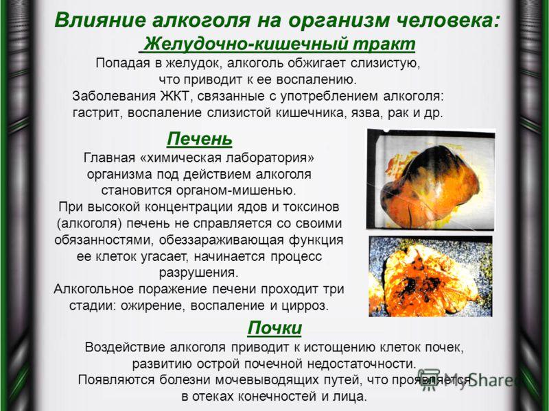Попадая в желудок, алкоголь обжигает слизистую, что приводит к ее воспалению. Заболевания ЖКТ, связанные с употреблением алкоголя: гастрит, воспаление слизистой кишечника, язва, рак и др.
