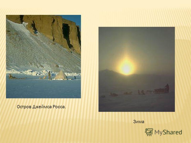 Остров Джеймса Росса. Зима