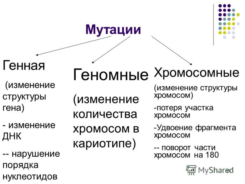 26 Мутации Генная (изменение структуры гена) - изменение ДНК -- нарушение порядка нуклеотидов Геномные (изменение количества хромосом в кариотипе) Хромосомные (изменение структуры хромосом) -потеря участка хромосом -Удвоение фрагмента хромосом -- пов