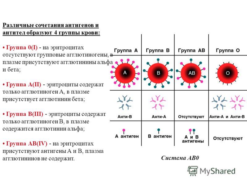 Система АВ0 Различные сочетания антигенов и антител образуют 4 группы крови: Различные сочетания антигенов и антител образуют 4 группы крови: Группа 0(I) - на эритроцитах отсутствуют групповые агглютиногены, в плазме присутствуют агглютинины альфа и