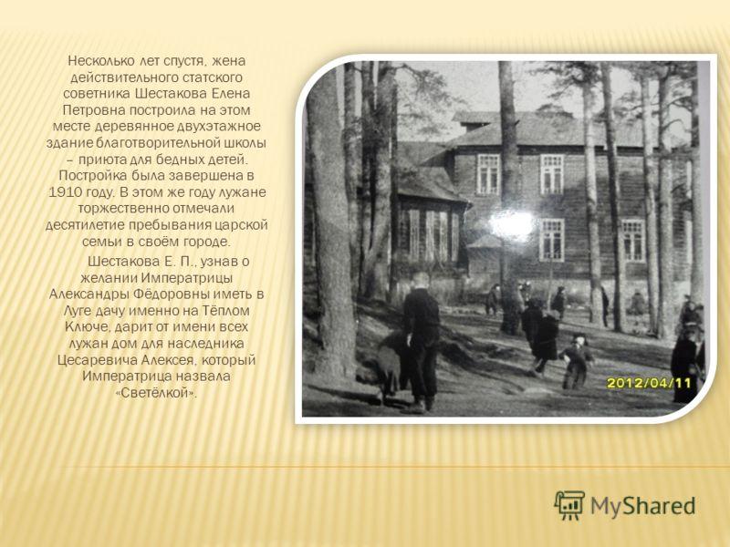 Несколько лет спустя, жена действительного статского советника Шестакова Елена Петровна построила на этом месте деревянное двухэтажное здание благотворительной школы – приюта для бедных детей. Постройка была завершена в 1910 году. В этом же году лужа
