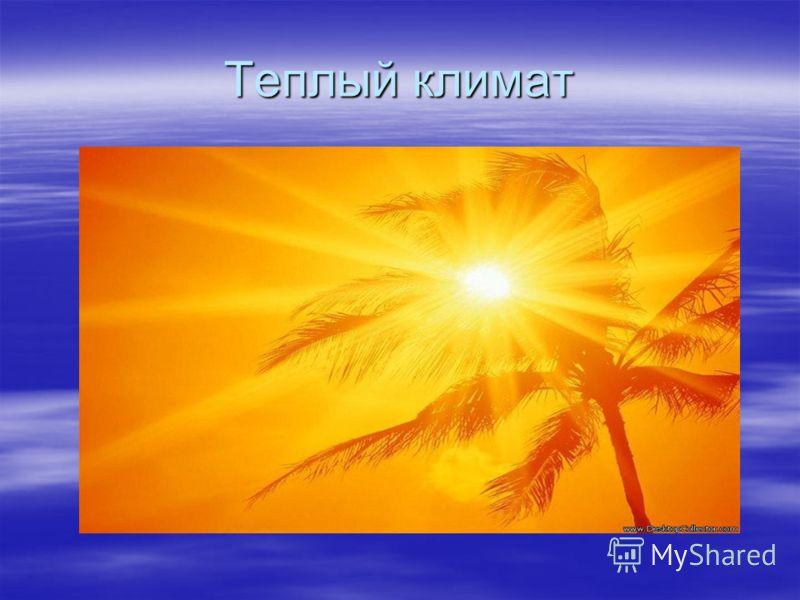 Теплый климат
