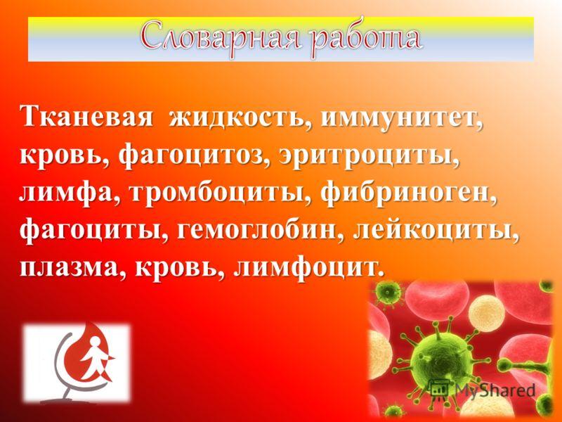 Тканевая жидкость, иммунитет, кровь, фагоцитоз, эритроциты, лимфа, тромбоциты, фибриноген, фагоциты, гемоглобин, лейкоциты, плазма, кровь, лимфоцит.