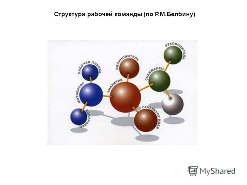 Структура рабочей команды (по Р.М.Белбину)