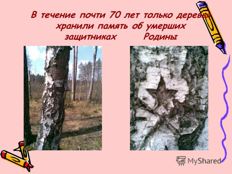 В течение почти 70 лет только деревья хранили память об умерших защитниках Родины