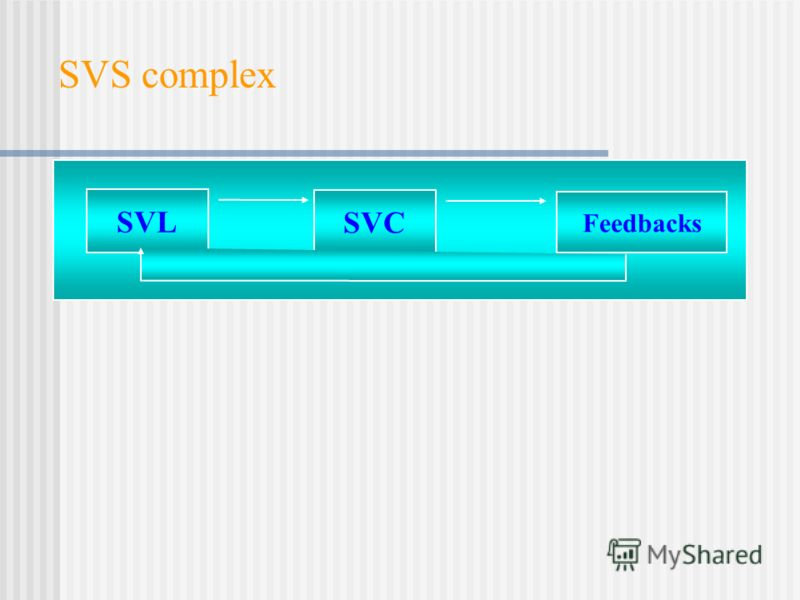 SVS complex SVL SVC Feedbacks