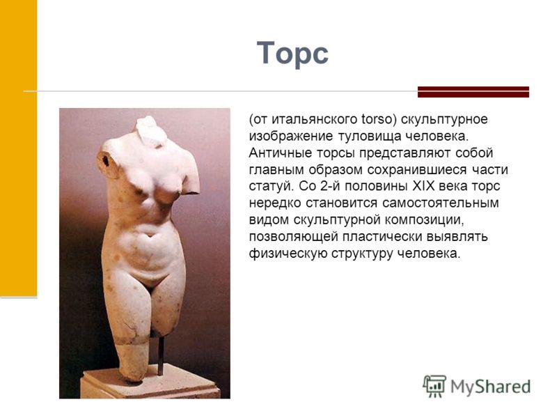 Торс (от итальянского torso) скульптурное изображение туловища человека. Античные торсы представляют собой главным образом сохранившиеся части статуй. Со 2-й половины XIX века торс нередко становится самостоятельным видом скульптурной композиции, поз