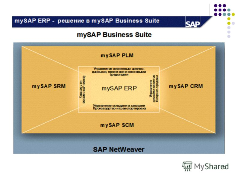 critique of sap system