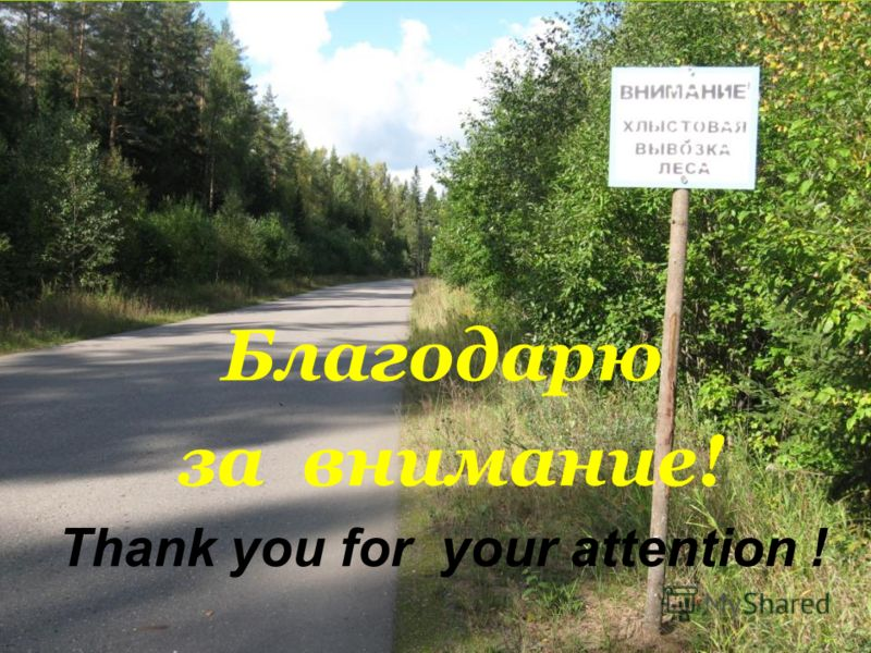 Благодарю за внимание! Thank you for your attention !