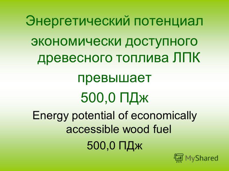 Энергетический потенциал экономически доступного древесного топлива ЛПК превышает 500,0 ПДж Energy potential of economically accessible wood fuel 500,0 ПДж
