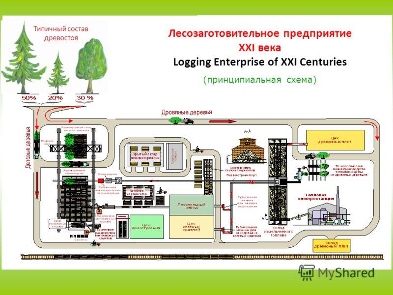 Типичный состав древостоя Лесозаготовительное предприятие XXI века Logging Enterprise of XXI Centuries (принципиальная схема)