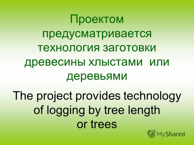 Проектом предусматривается технология заготовки древесины хлыстами или деревьями The project provides technology of logging by tree length or trees