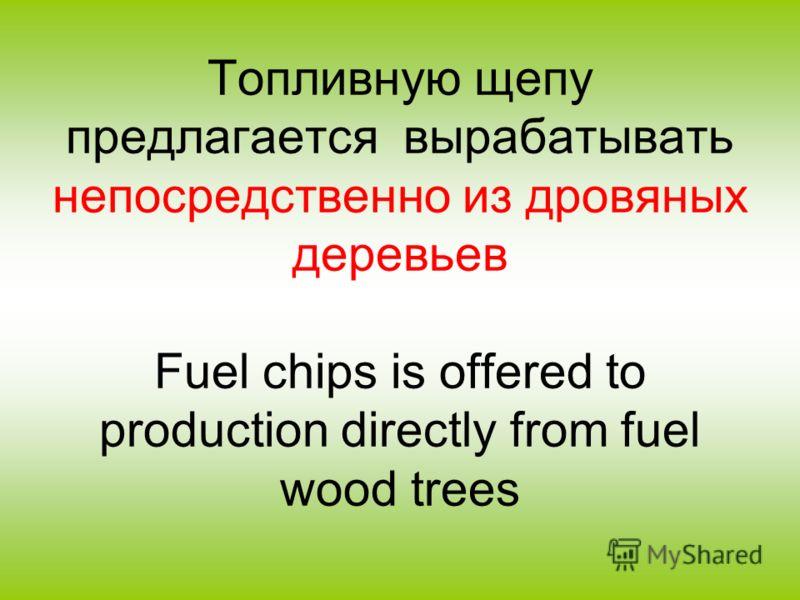 Топливную щепу предлагается вырабатывать непосредственно из дровяных деревьев Fuel chips is offered to production directly from fuel wood trees