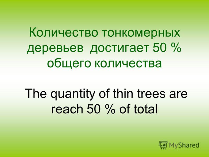Количество тонкомерных деревьев достигает 50 % общего количества The quantity of thin trees are reach 50 % of total