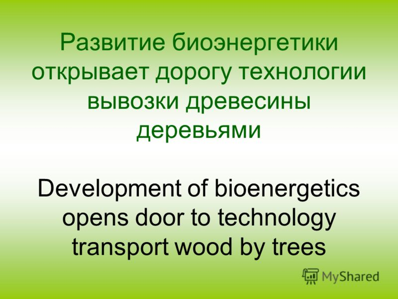 Развитие биоэнергетики открывает дорогу технологии вывозки древесины деревьями Development of bioenergetics opens door to technology transport wood by trees