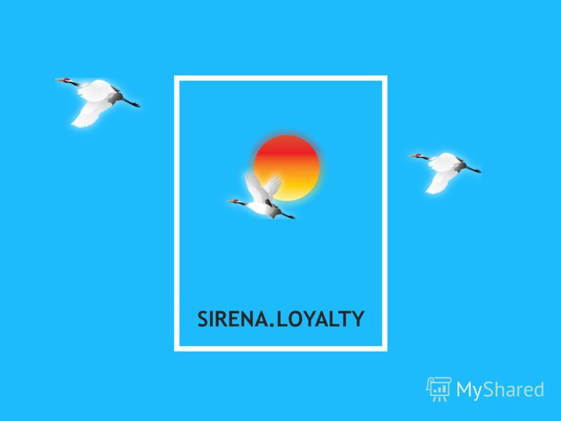 SIRENA.LOYALTY