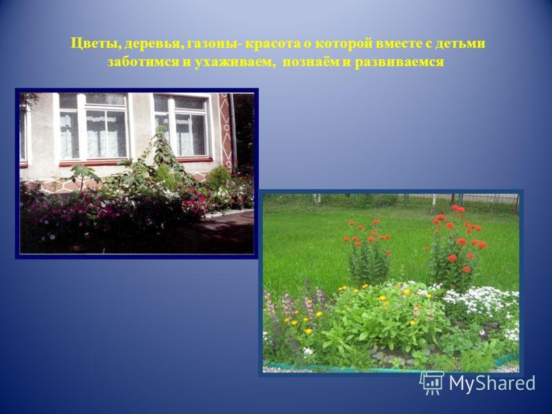 Цветы деревья газоны красота о