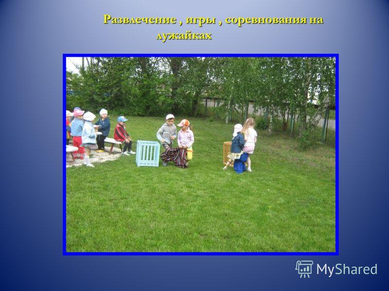 Развлечение, игры, соревнования на лужайках Развлечение, игры, соревнования на лужайках