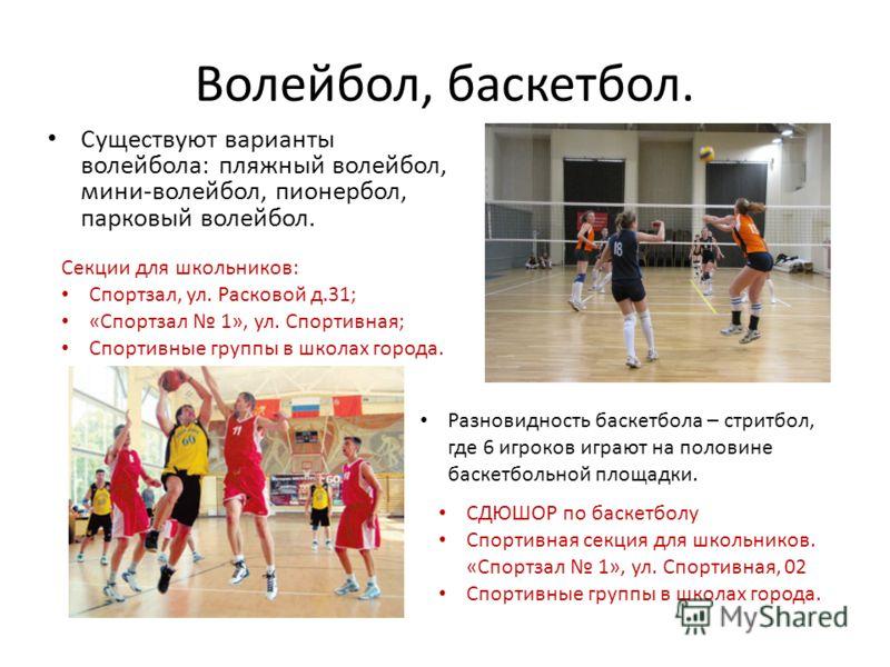 Волейбол, баскетбол. Существуют варианты волейбола: пляжный волейбол, мини-волейбол, пионербол, парковый волейбол. Секции для школьников: Спортзал, ул. Расковой д.31; «Спортзал 1», ул. Спортивная; Спортивные группы в школах города. Разновидность баск