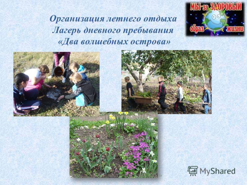 Организация летнего отдыха Лагерь дневного пребывания «Два волшебных острова» МБОУ «Ключёвская СОШ»
