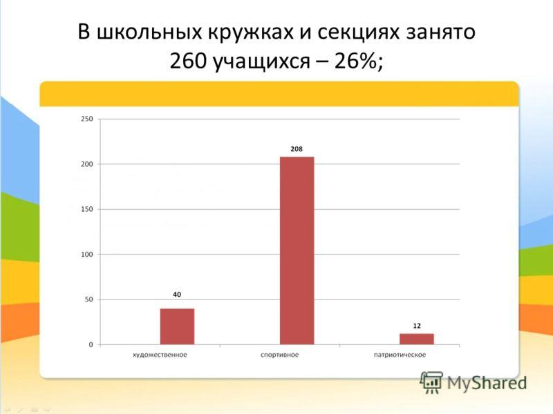 В школьных кружках и секциях занято 260 учащихся – 26%;