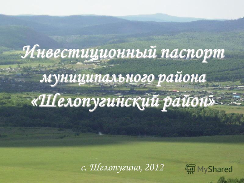 Инвестиционный паспорт муниципального района «Шелопугинский район» с. Шелопугино, 2012