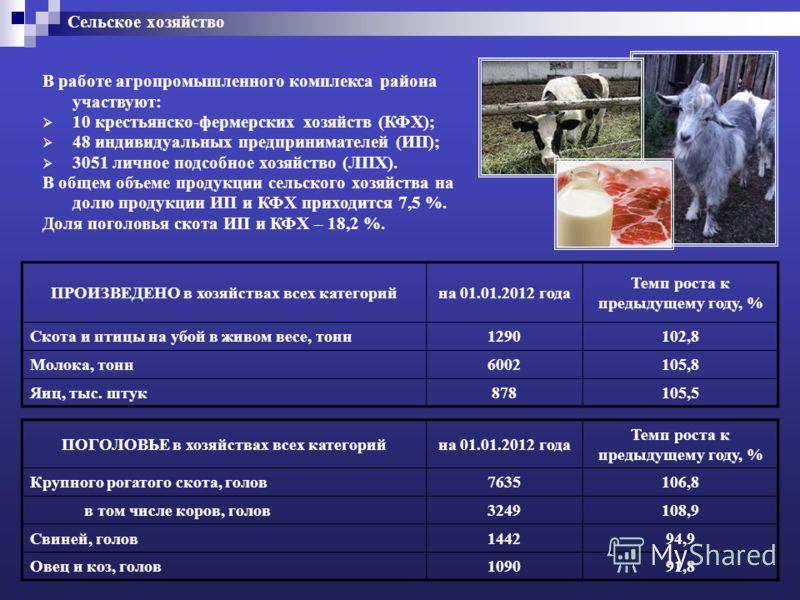 Сельское хозяйство ПРОИЗВЕДЕНО в хозяйствах всех категорийна 01.01.2012 года Темп роста к предыдущему году, % Скота и птицы на убой в живом весе, тонн1290102,8 Молока, тонн6002105,8 Яиц, тыс. штук878105,5 ПОГОЛОВЬЕ в хозяйствах всех категорийна 01.01