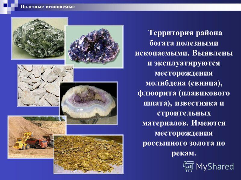 Полезные ископаемые Территория района богата полезными ископаемыми. Выявлены и эксплуатируются месторождения молибдена (свинца), флюорита (плавикового шпата), известняка и строительных материалов. Имеются месторождения россыпного золота по рекам.