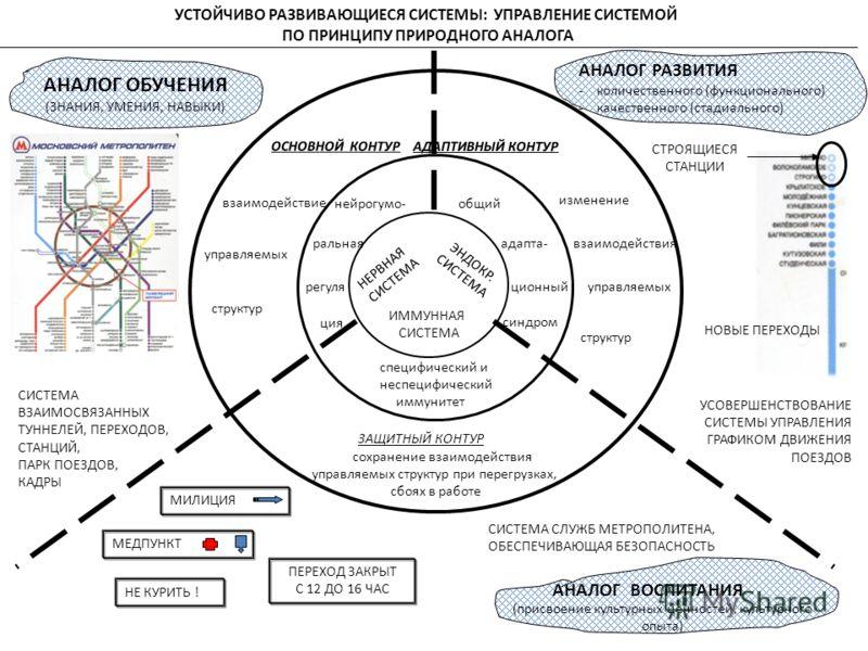 НЕРВНАЯ СИСТЕМА ЭНДОКР. СИСТЕМА ИММУННАЯ СИСТЕМА нейрогумо- ральная регуля ция общий адапта- ционный синдром специфический и неспецифический иммунитет ОСНОВНОЙ КОНТУР АДАПТИВНЫЙ КОНТУР ЗАЩИТНЫЙ КОНТУР взаимодействие управляемых структур изменение вза