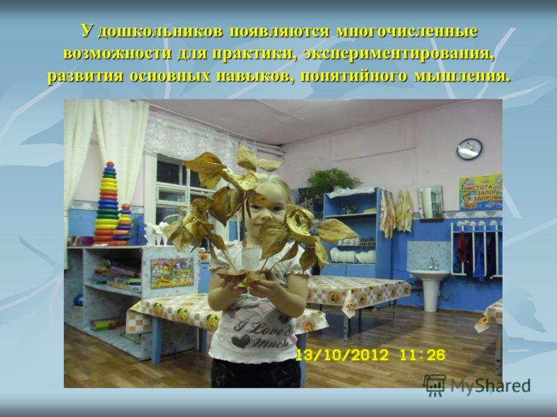 У дошкольников появляются многочисленные возможности для практики, экспериментирования, развития основных навыков, понятийного мышления.