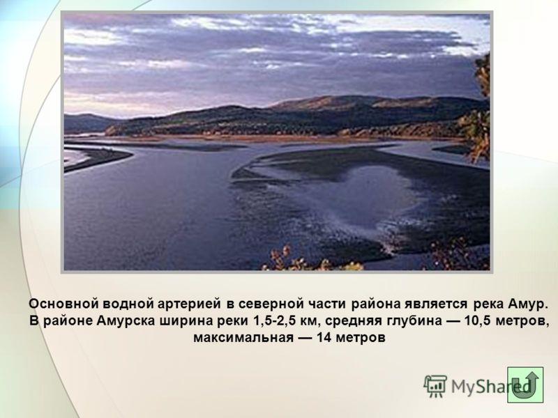 Основной водной артерией в северной части района является река Амур. В районе Амурска ширина реки 1,5-2,5 км, средняя глубина 10,5 метров, максимальная 14 метров