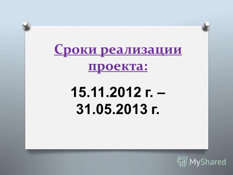 Сроки реализации проекта: 15.11.2012 г. – 31.05.2013 г.
