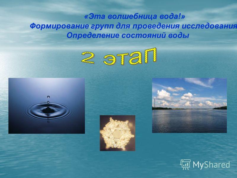 «Эта волшебница вода!» Формирование групп для проведения исследования. Определение состояний воды