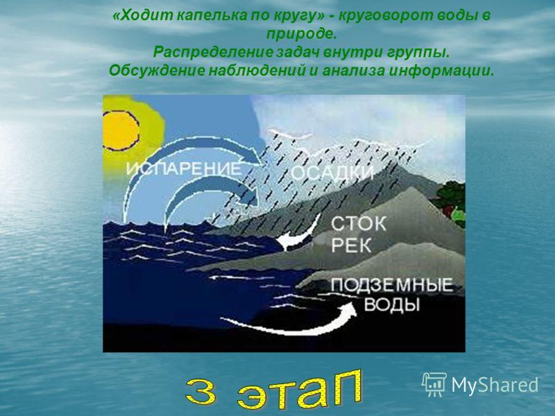 «Ходит капелька по кругу» - круговорот воды в природе. Распределение задач внутри группы. Обсуждение наблюдений и анализа информации.