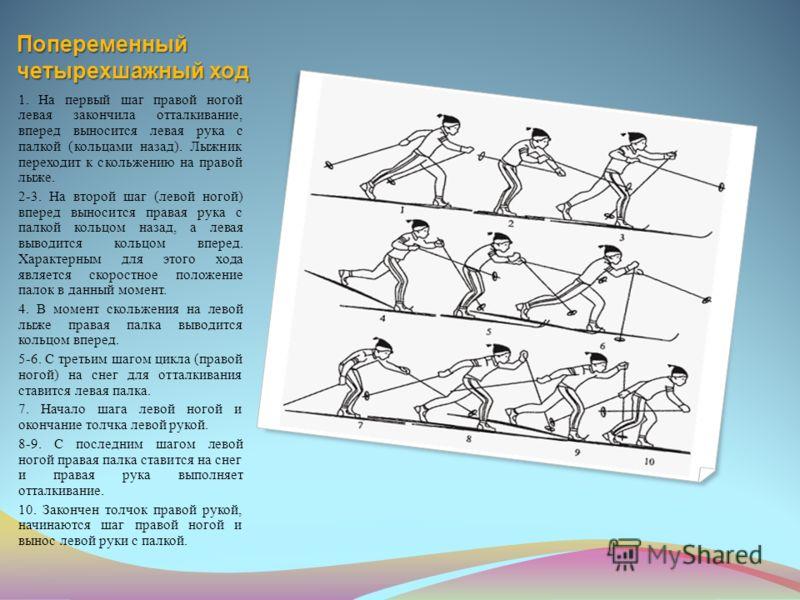 Попеременный четырехшажный ход 1. На первый шаг правой ногой левая закончила отталкивание, вперед выносится левая рука с палкой (кольцами назад). Лыжник переходит к скольжению на правой лыже. 2-3. На второй шаг (левой ногой) вперед выносится правая р