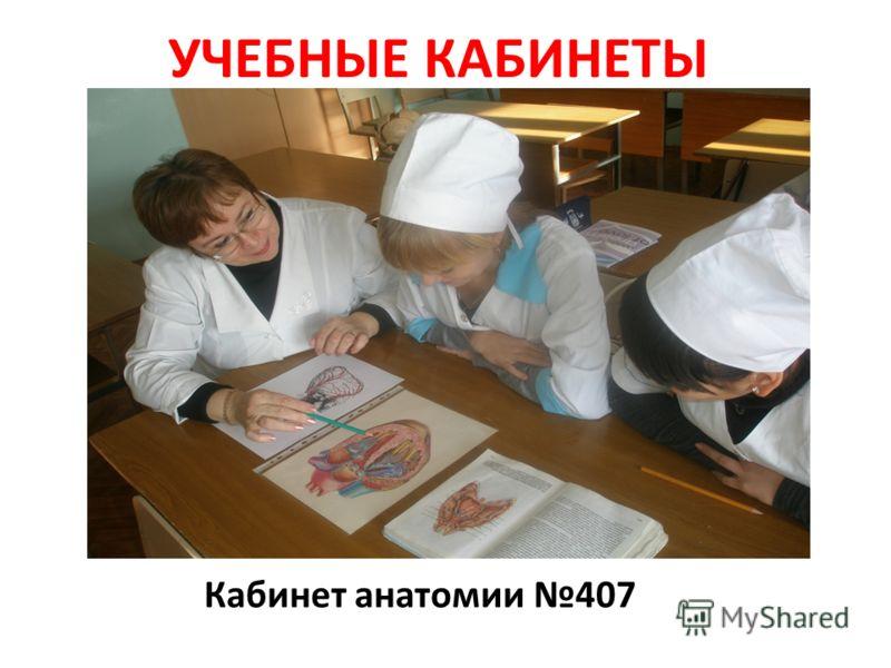 УЧЕБНЫЕ КАБИНЕТЫ Кабинет анатомии 407