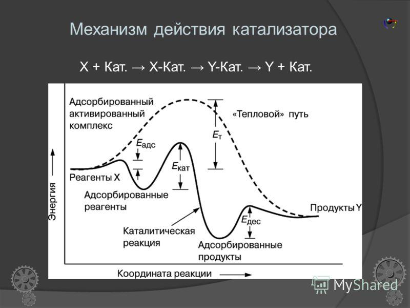 Гетерогенизированные катализаторы общая формула XnMmYy, где М-активный центр (атом) переходного металла, Х-лиганд, связывающий атом металла с поверхностью, Y-внешний лиганд. Плюсы: Сочетают высокую активность и однородность по каталитическим свойства