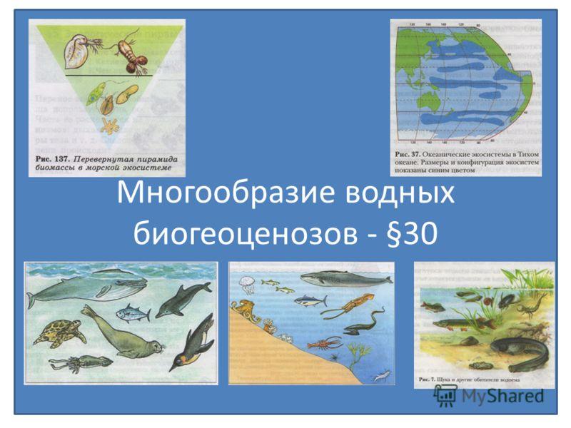 Многообразие водных биогеоценозов - §30