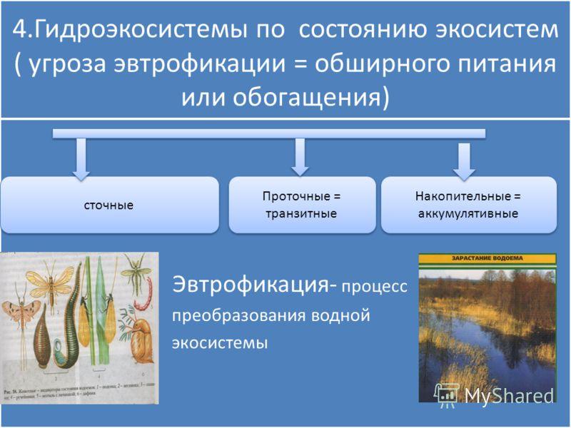 4.Гидроэкосистемы по состоянию экосистем ( угроза эвтрофикации = обширного питания или обогащения) Эвтрофикация- процесс преобразования водной экосистемы Эвтрофикация- процесс преобразования водной экосистемы сточные Проточные = транзитные Накопитель