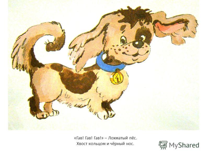 «Гав! Гав! Гав!» – Лохматый пёс. Хвост кольцом и чёрный нос.